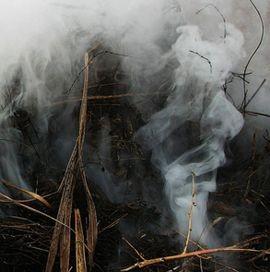 И дым отечества нам сладок и приятен