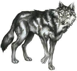 Работа не волк - в лес не убежит